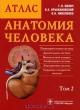 Анатомия человека. Атлас в 3х томах том 2й. Внутренние органы